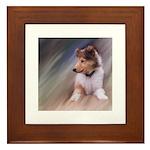 Collie Puppy Profile Framed Tile