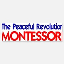 Peaceful Revolution Bumper Car Car Sticker