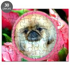 FebruarySavannah Puzzle