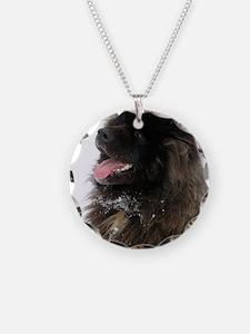 IMG_0494 kona japan Necklace Circle Charm