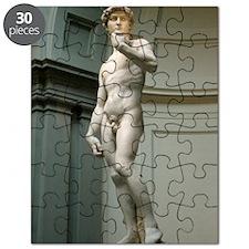 The-David Puzzle