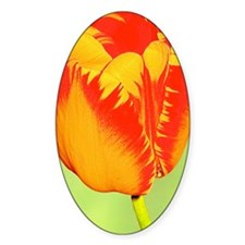 Tulip Flower Itouch2 Itouch4 Ipod C Decal