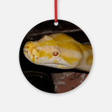 Christa Round Ornament