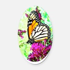 Monarch Butterfly Itouch2 Itouch4  Oval Car Magnet
