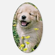 Golden Retriever Puppy Itouch2 Itou Decal