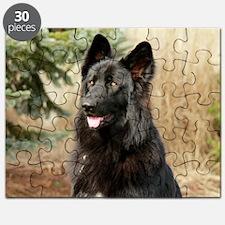 wildeshots-022611 074 Puzzle