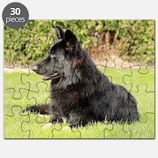 wildeshots-022611 093b Puzzle