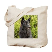 6x6-wildeshots-022611 026b Tote Bag