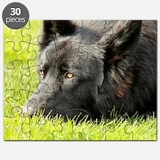 wildeshots-022611 114b Puzzle