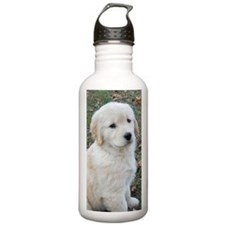 Golden Retriever Puppy Water Bottle