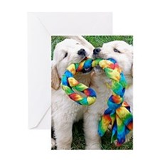 Golden Retriever Puppy Itouch2 Itouc Greeting Card