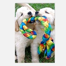 Golden Retriever Puppy It Postcards (Package of 8)