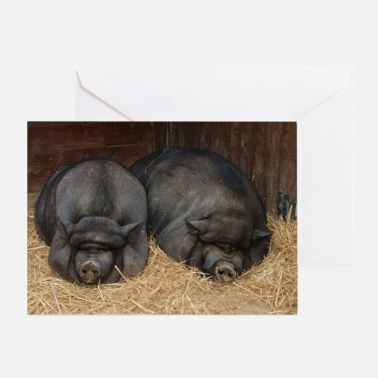 Pot Bellied Pigs Lisbon Zoo_July_200 Greeting Card