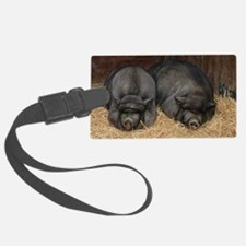 Pot Bellied Pigs Lisbon Zoo_July Luggage Tag