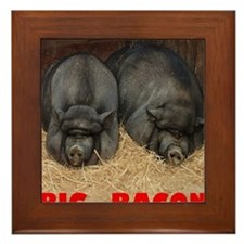 Pot_Bellied_Pigs_Big_Bacon_12by14 Framed Tile