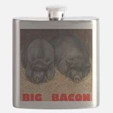 Pot_Bellied_Pigs_Big_Bacon_12by14 Flask