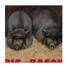 Pot_Bellied_Pigs_Big_Bacon_12by14 Tile Coaster