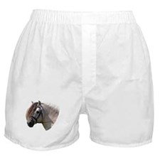 """""""Fjord 1"""" Boxer Shorts"""