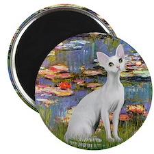 """Lilies (#2) & Devonshire Rex 2.25"""" Magnet (100 pac"""