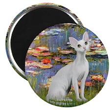 """Lilies (#2) & Devonshire Rex 2.25"""" Magnet (10 pack"""