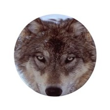 """wolf_YNP_wyoming 3.5"""" Button"""