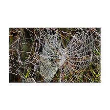 Spiders web 9R030D-010 Rectangle Car Magnet