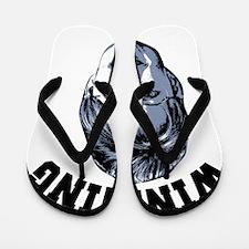 Palin Winning Flip Flops