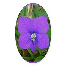 Violet Wildflower Blossom iTouch2 I Decal