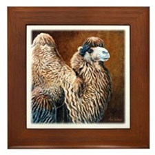 Bactrian Camel Framed Tile