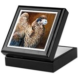 Camel Square Keepsake Boxes