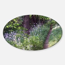 Wildflowers along trail through Sil Sticker (Oval)