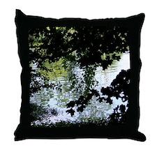 Reflectons in Acton Lake#2 Throw Pillow