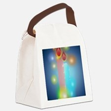 Passover Lights PosterP Canvas Lunch Bag