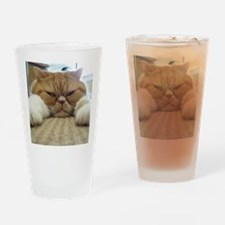 Flat Out Snoozin Drinking Glass