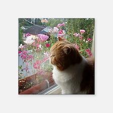 "Ah, Spring (square) Square Sticker 3"" x 3"""
