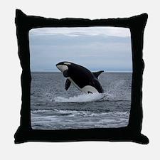 IMG_2447 - Copy Throw Pillow
