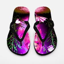 Image28-90 Flip Flops