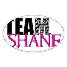 Team Shane Hat Decal