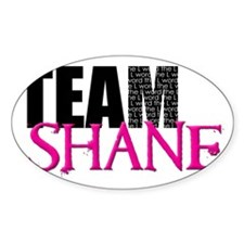 Team Shane Hat Stickers