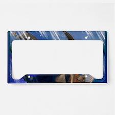 Image58-mer License Plate Holder
