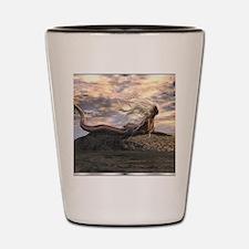 Image71-0 Shot Glass