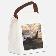 Image71-0 Canvas Lunch Bag