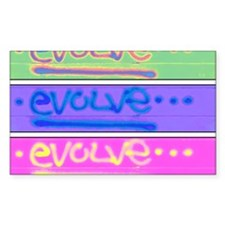 evolve3 Decal