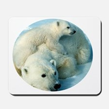 polar bear with cub cuddling Mousepad