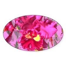 orchid series 4 Decal