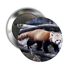 Red Panda 3 Button