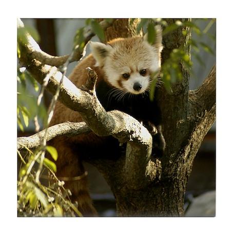 Red Panda 2 Tile Coaster