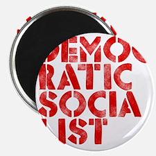 DEM-SOC-RED Magnet