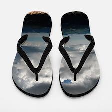 DSC_0614 Flip Flops