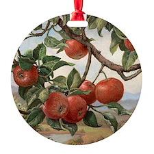 Apples_TILE Ornament